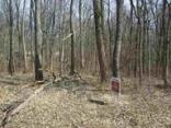 Lot 51 Parkeland Hills, Rockville, IN 47872