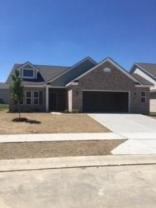 16597 W Winter Meadow Drive, Fishers, IN 46040