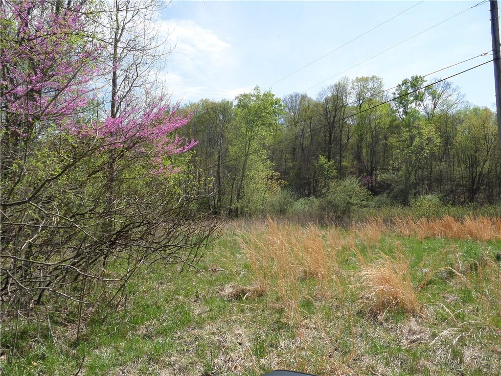 3815 W Wheeler Hollow Road, Vallonia, IN 47281 image #11