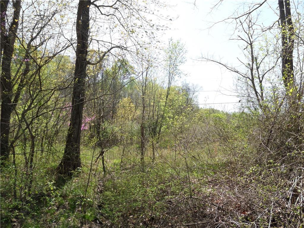 3815 W Wheeler Hollow Road, Vallonia, IN 47281 image #15