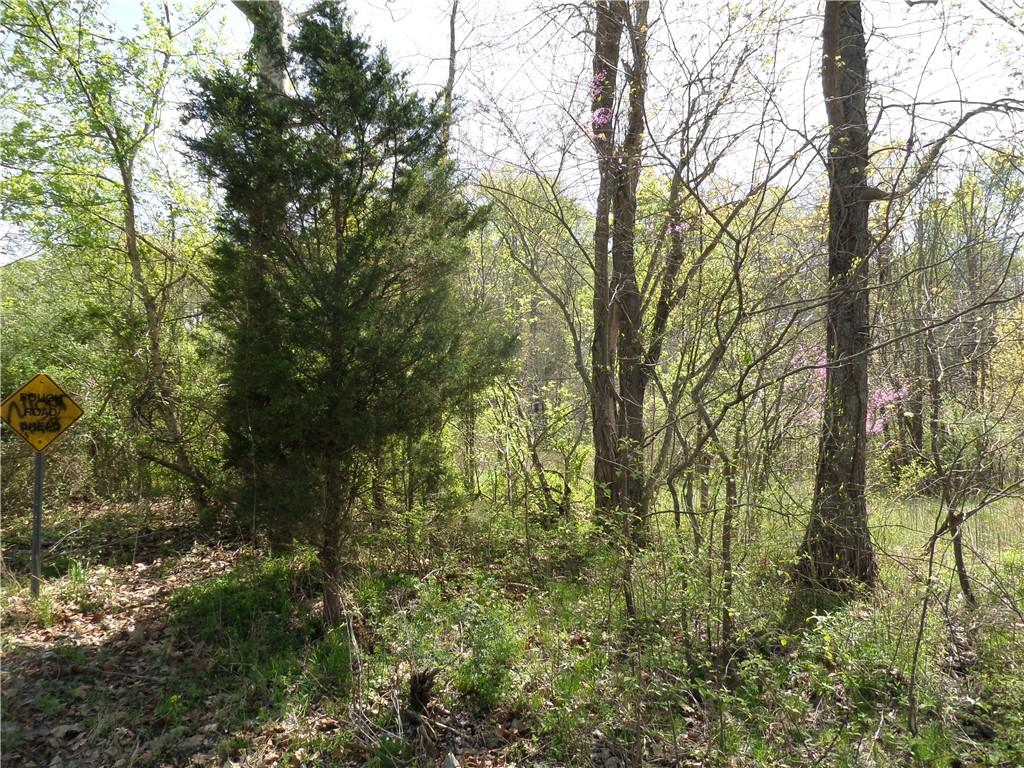 3815 W Wheeler Hollow Road, Vallonia, IN 47281 image #16
