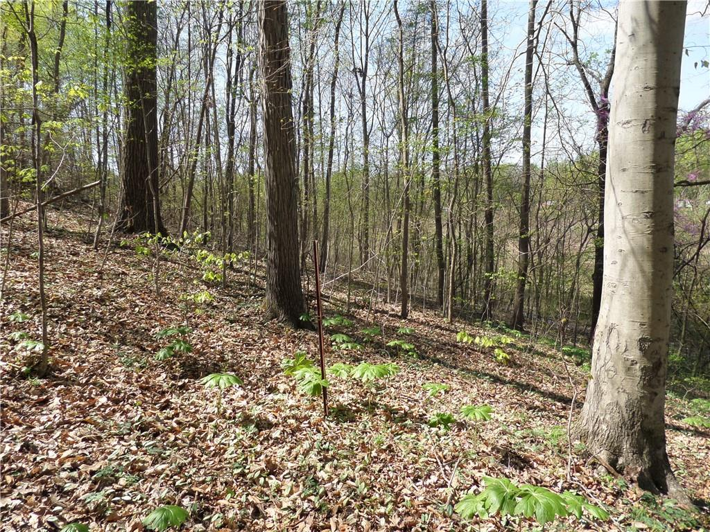 3815 W Wheeler Hollow Road, Vallonia, IN 47281 image #23