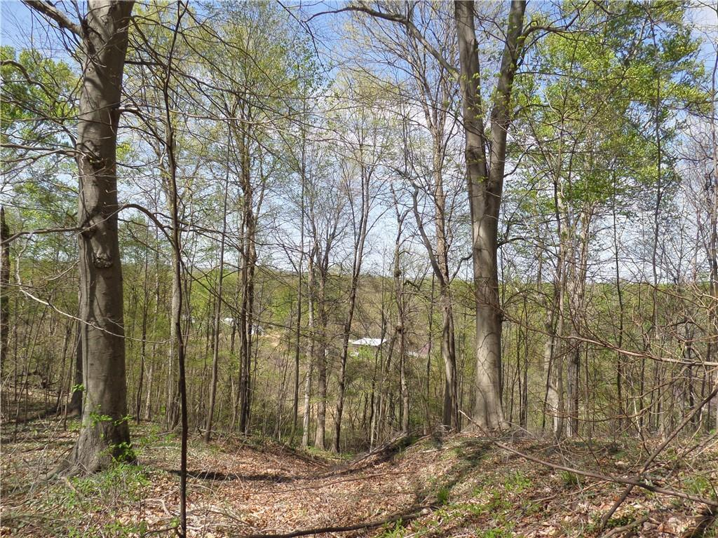 3815 W Wheeler Hollow Road, Vallonia, IN 47281 image #29