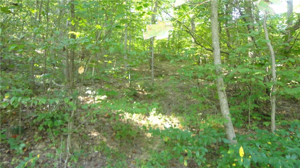 3815 W Wheeler Hollow Road, Vallonia, IN 47281 image #3
