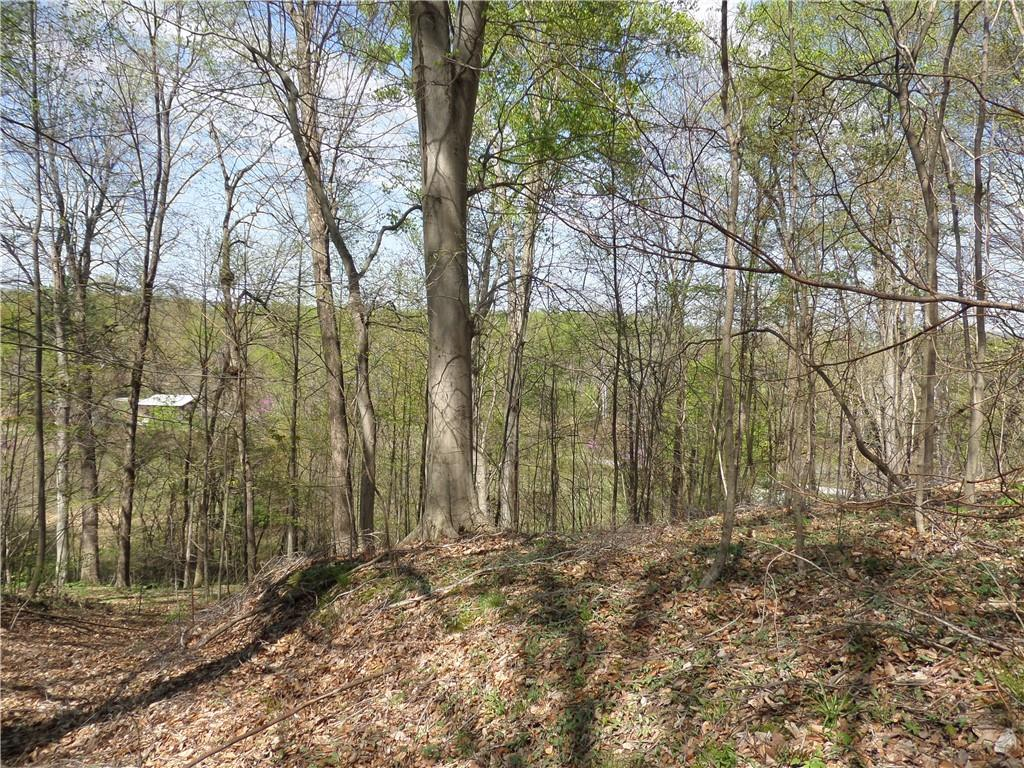3815 W Wheeler Hollow Road, Vallonia, IN 47281 image #30