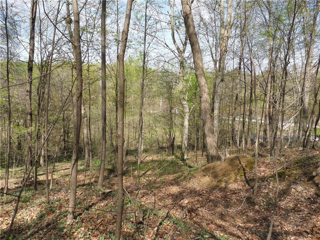 3815 W Wheeler Hollow Road, Vallonia, IN 47281 image #32