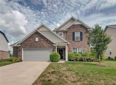 8673 N Crestview Trail, McCordsville, IN 46055