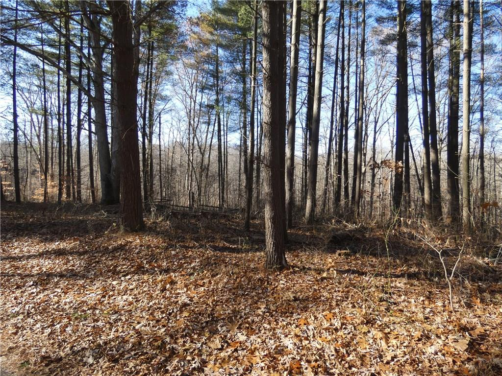 Lot 25 S Persimmon Lake Drive Seymour, IN 47274